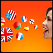 Multilanguage translator