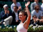 Pliskova en Halep vervolledigen halve finales Roland Garros