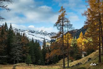 Photo: I colori ell'autunno.