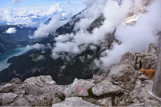 Photo: panorama da Cima Croz Altissimo