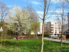 Photo: 2012.04.11
