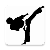 Taekwondo Training Program
