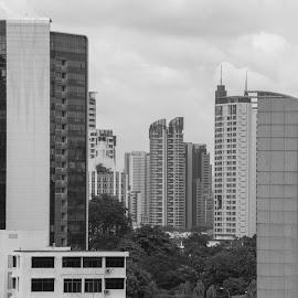 Singapore buildings by Bert Templeton - Black & White Buildings & Architecture ( singapore, roof, buildings, black and white, architecture )