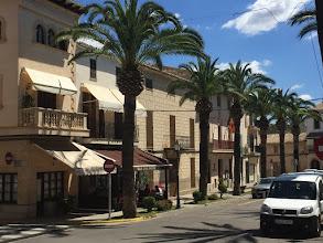 """Photo: Finca """"S'Olivar d'Es Coscois"""", Santa Margalida/ Mallorca. Infos unter www.es-coscois.de ."""