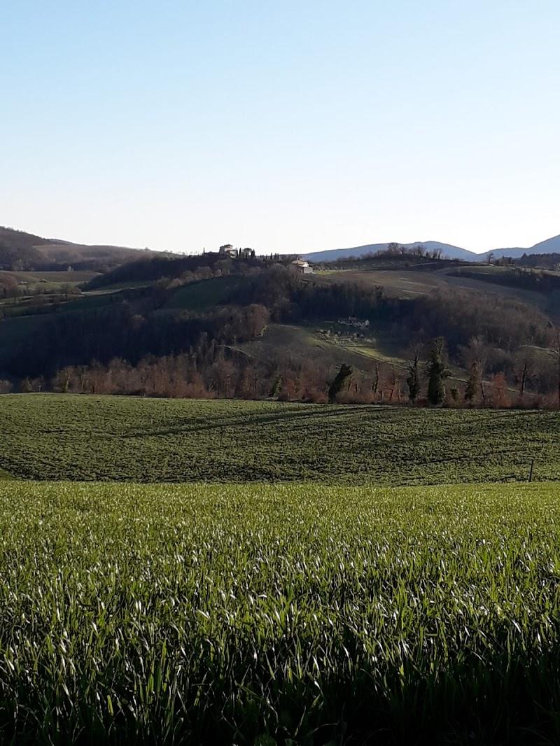 campo di grano di Click-clack