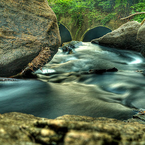 Rocky Stream by Jeff Klein - Nature Up Close Water ( water, stream, park, nature, forest, landscape, rocks )