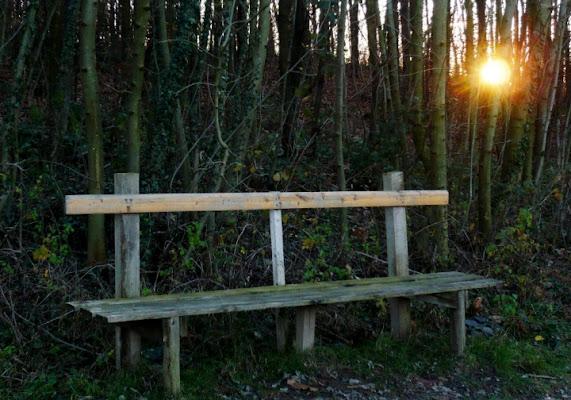 Ultima sosta poi... il tramonto. di orsooss