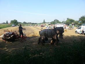 Photo: Overzichtsfoto van het ploegen met de paarden, gezien vanaf de Katerdam.