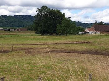 terrain à Altillac (19)