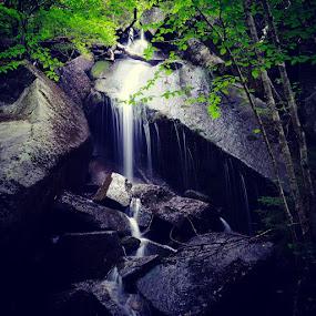 by Solomen Flewellen - Nature Up Close Water (  )