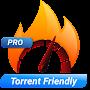 Download Hot VPN Pro apk