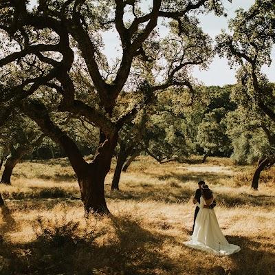Fotógrafo de bodas Roberto Pecino (robertopecino). Foto del 01.01.1970