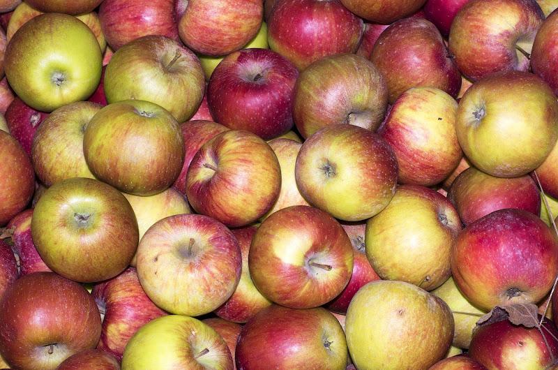cassetta di mele di manolina