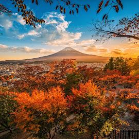 Mt. Fuji with red leaf in the autumn on sunset at Fujiyoshida, J by Nuttawut Uttamaharach - Landscapes Mountains & Hills ( cherry, november, kawaguchiko, pink, japan, kawaguchi, scenery, red, spring, beautiful, mountain, view, japanese, fall, chureito, season, volcano, landmark, day, shinto, tower, sky, roof, sakura, nature, arakura, asia, mt, sen gen, tree, mount, fujiyoshida, shrine, pagoda, tokyo, foliage, blue, background, yamanashi, sunset, temple, autumn, travel, volcanic, fuji, landscape )