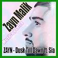 ZAYN - Dusk Till Dawn ft. Sia All Songs