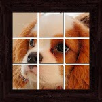 Puppies Puzzles - 101 pictures Icon