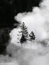 Photo: Heiße Quelle im Yellowstone NP