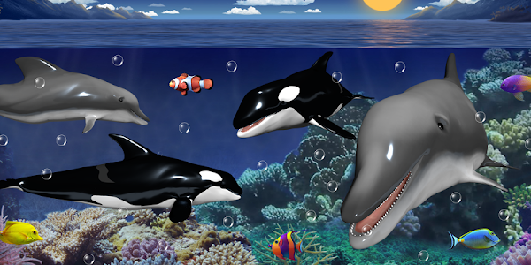 Dolphins and orcas wallpaper screenshot 0