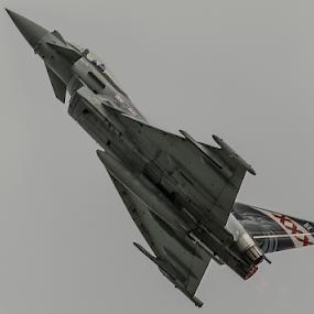 RAF Typhoon  by Mike Ellis - Transportation Airplanes ( typhoon, raf, fighter, military, warplane )
