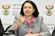 In a letter sent to chairperson of the portfolio committee on police, Tina Joemat-Pettersson, DA shadow minister of police Andrew Whitfield said serious allegations of misconduct and fraud in the Independent Police Investigative Directorate required a full interrogation by parliament. File photo.