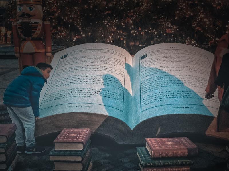 Un grande libro di Concetta Caracciolo