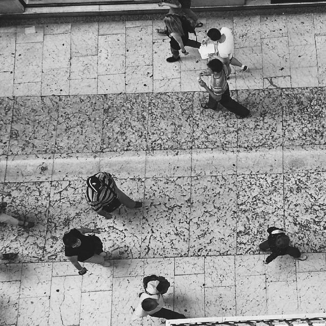Vi osservo dall'alto... di Nicola Rossignoli photo2017