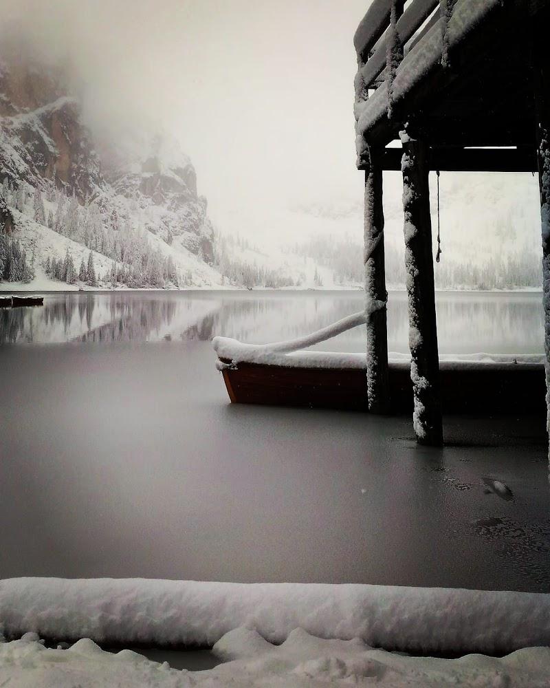 Lo stupore della neve di adriana_noci