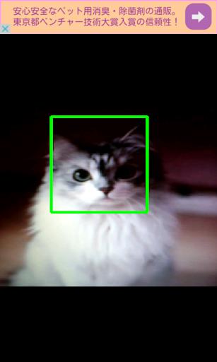 MeowSnap ネコを自動で撮影する自撮りカメラ