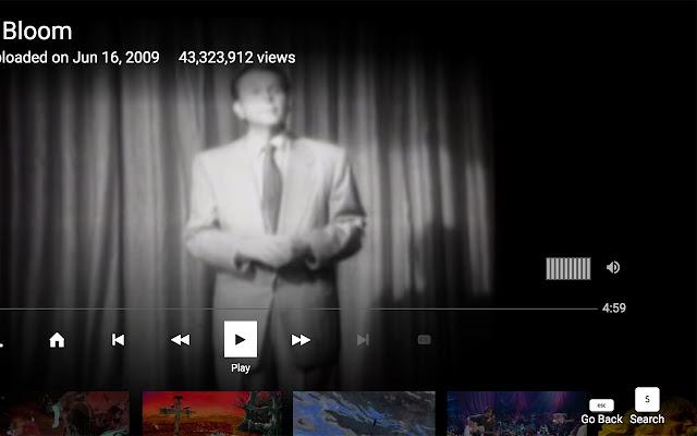 YouTube TV Volume control
