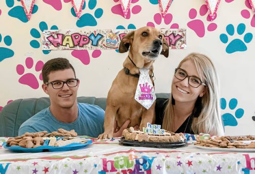 Gary Spencer, left, and Casey Malone with their dog, Bear, at his birthday party. Doggie daycare centres often offer birthday parties, cakes and other delicacies.