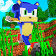 Sonic Parkour Mod Fast Adventure Map For MCPE Apk