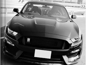 シェルビー GT350 のカスタム事例画像 Black Cobraさんの2020年01月12日12:23の投稿
