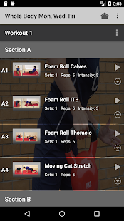 Emz Fitness Online - náhled