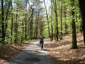 Photo: i przez las