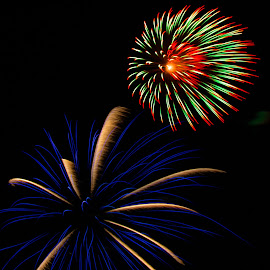 by Ron Meyers - Public Holidays July 4th