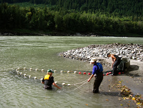Photo: Some members of our party were doing science! Using a seine net to check out some of the local aquatic life