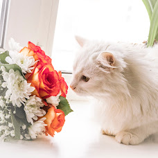 Wedding photographer Vitaliy Zuev (Vitalek831). Photo of 09.03.2015