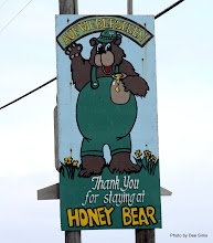 Photo: (Year 2) Day 356 - The Honey Bear Camp Sign
