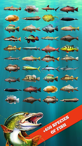 Let's Fish: Sport Fishing Games. Fishing Simulator screenshot 13