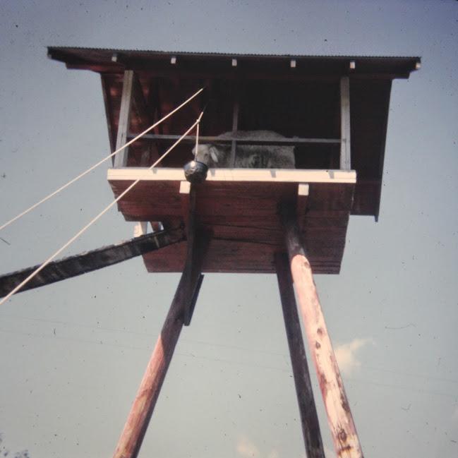Goat tower at Aqualand