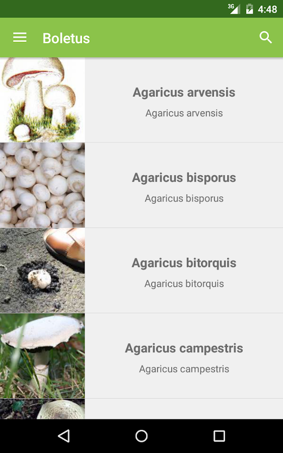Boletus - mushroom search- screenshot
