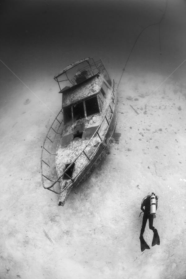 Bohol boat wreck by Paul Cowell - News & Events Weather & Storms ( pwcstorms, underwater, scuba, damage, boat wreck, storm, philippines )