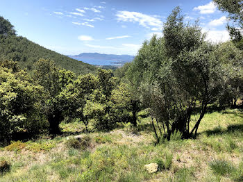 terrain à La Cadière-d'Azur (83)