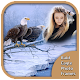 Bald Eagle Photo Frames (app)