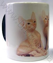Photo: Магическая чашка с любимым котом