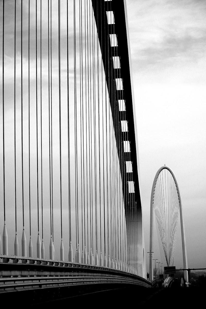 ponti avveniristici Le Vele. di Naldina Fornasari