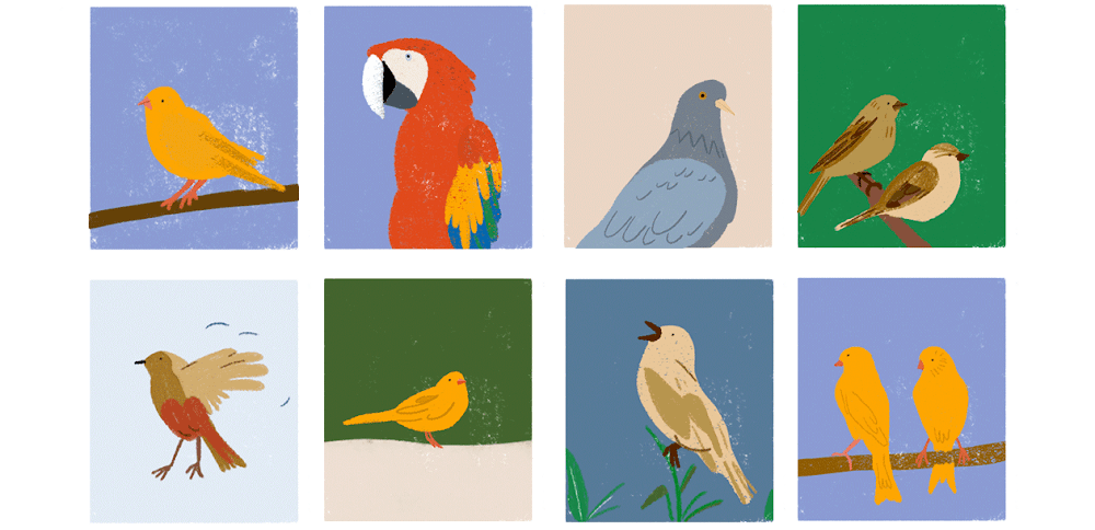 A lineup of birds in an array of colors, shapes and sizes that have a brightly colored parrot sitting conspicuously among them.