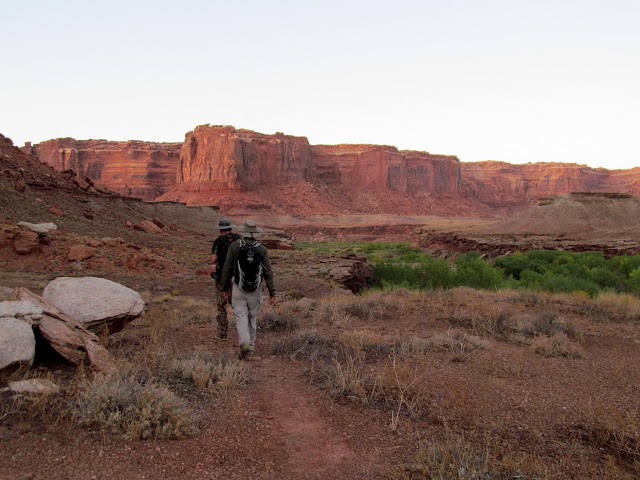 Trail above Horseshoe Canyon