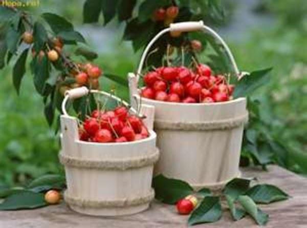 Cherry Fantasy Recipe