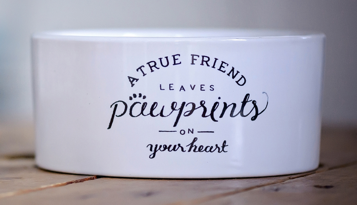 A white dog bowl, with the words A true friends leaves pawprints on your heart.
